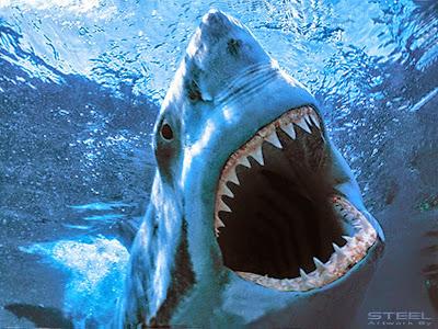 SHARK EMPIRE